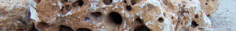 Rocallas para jardín